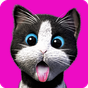 Daily Kitten : gato virtual