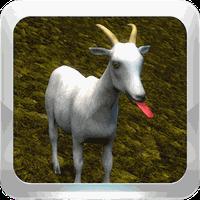 Cabra Feliz (My Happy Goat)