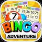 Bingo Adventure - Free Game