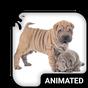Teclado Animado Cachorros